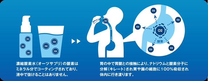 02supple img1 - プロダクト